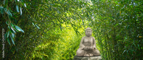Fotografie, Obraz  buddha statue im bambuswald