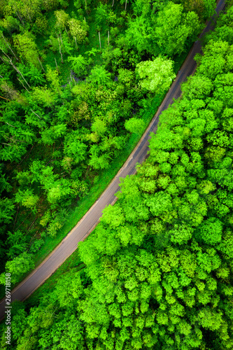 Canvas Prints Road in forest Polska wiosna z lotu ptaka
