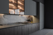 Gray and wooden kitchen interior with counters