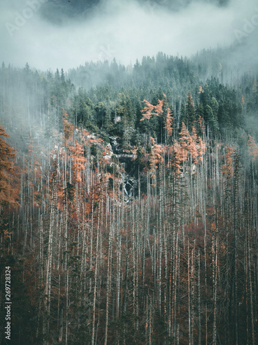 Poster Taupe beautiful waterfall in foggy forest mountains