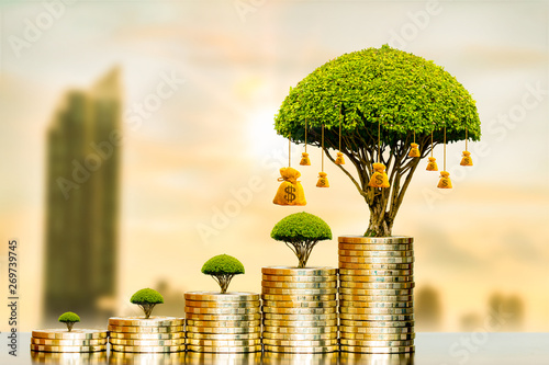 Fotomural  Stacking gold coins and money bag of tree with growing put on the wood on the morning sunlight in the photo blur cityscape background, Saving money and loan for business investment concept