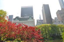 Parc De New York