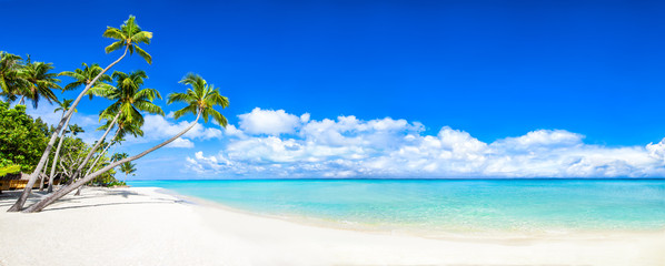 Beautiful tropical island with palm trees and beach panorama as background image