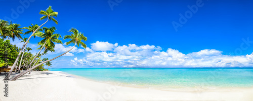 Fototapeten Strand Beautiful tropical island with palm trees and beach panorama as background image