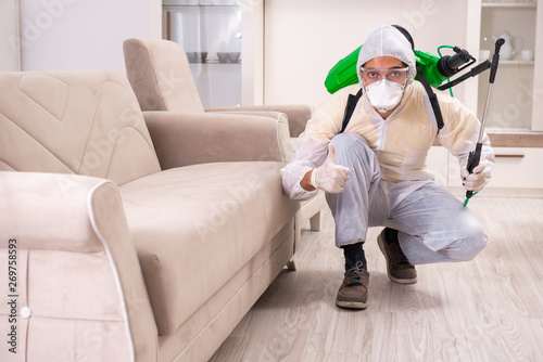 Fotomural Pest control contractor working in the flat