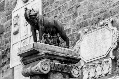 Valokuva Capitoline Wolf, Italian: Lupa Capitolina - bronze sculpture of she-wolf nurses