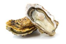 Fresh Opened Oyster On White Background
