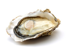 Fresh Opened Oyster On White B...