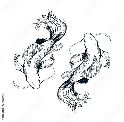 Beautiful fishes ink drawing vector Wallpaper Mural