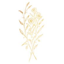 Golden Branches Of Wild Flower...