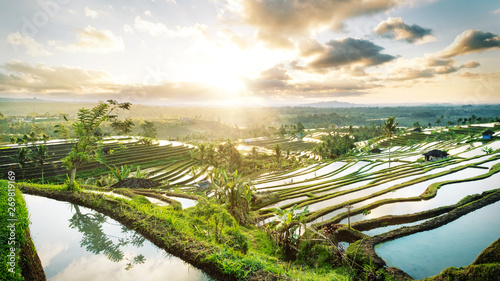 Poster de jardin Bali Beautiful sunrise over the Jatiluwih Rice Terraces in Bali, Indonesia.