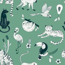 Tropical Rainforest Animals Ve...
