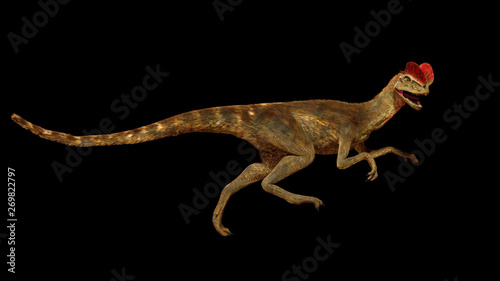 Fotografie, Obraz  running Dilophosaurus, theropod dinosaur from the Early Jurassic period (3d illu