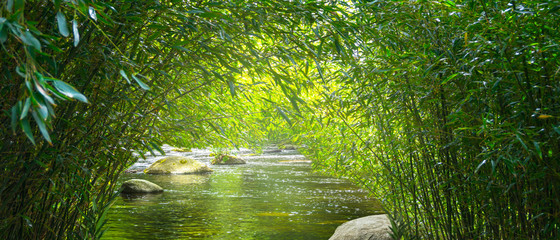 bach im idyllischen bambuswald