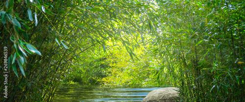 Recess Fitting Bamboo wasser im bambuswald