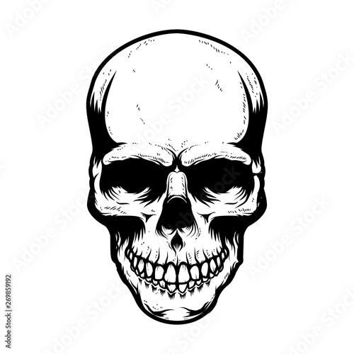 Photo Human skull isolated on white background