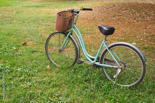 Foto op Plexiglas Fiets Beautiful vintage bicycle in park