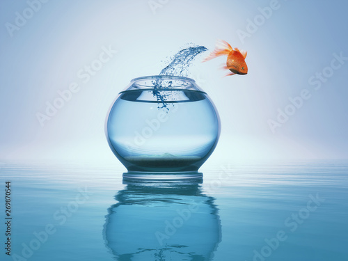 Photo  Goldfish jump to the sea