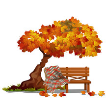 Cozy Bench Under The Autumn Tree. Outdoor Furniture Isolated On White Background. Sketch On The Theme Of The Golden Autumn. Vector Cartoon Close-up Illustration.