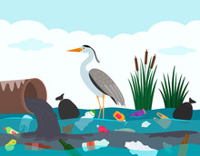 Ecological Disaster Of Plastic Waste In The River. A Heron Bird Stands In A Lake Polluted With Plastic Debris And Dead Fish.