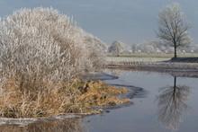 Winter. Frozen Icey Landscape. River Wold Aa Ruinerwold Netherlands