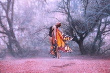 Monarch Butterfly Levitation, With Huge Beautiful Wings. Coast With Bliss On The Face. Gentle Soaring In The Air, The Soul Of Nature Aspire To Heaven. Young Woman With Slim Body In Fairy Costume.