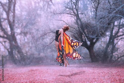 Obraz na plátně  Monarch butterfly levitation, with huge beautiful wings