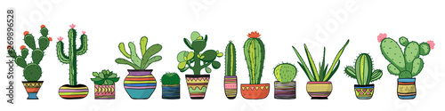 Fotografija Cozy cacti set. Vector