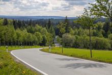 Curve Street In To The Forest