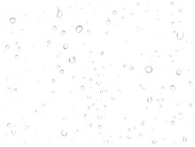 Vector Rain Water Drops On White Background. Pure Realistic Droplets Condensed.