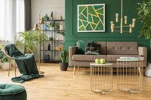 Modern Gold And Green Living R...