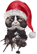 Handdrawn Aquarell Christmas Cat With A Hat. Grumpy Cat,, Watercolor, Animal, Nature