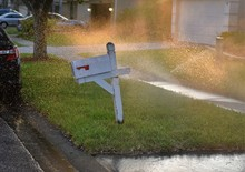 Springlers At Full Blast Are Soaking The Typical White US Mail Household Mailbox In A Florida Neighborhood Causing Water Damage To Letters Inside
