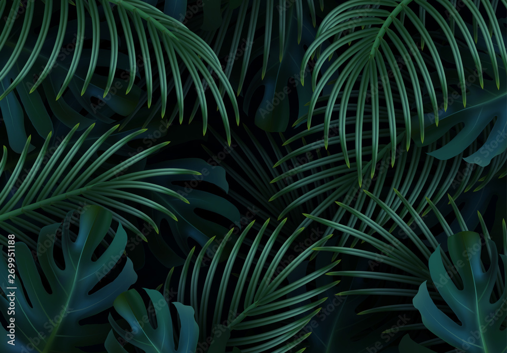 Fototapeta Branch palm realistic. Leaves and branches of palm trees. Tropical leaf background. Green foliage, tropic leaves pattern. vector illustration