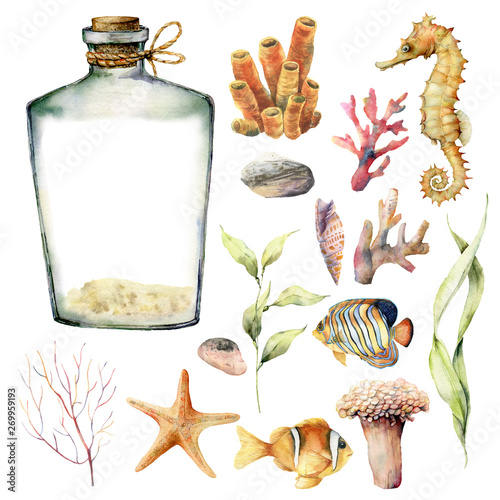Fototapeta Watercolor nautical set with coral animals, plants and fish. Hand painted underwater branches, starfish, bottle isolated on white background. Sea life illustration. For design, print or background. obraz