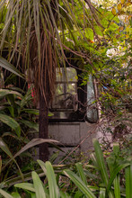 An Abandoned Rusting Bus In The Middle Of The Bush In New Zealand,  The Bush Overgrowing The Bus, Nobody In The Image