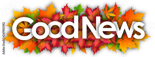 Pinturas sobre lienzo  good news word and autumn leaves background