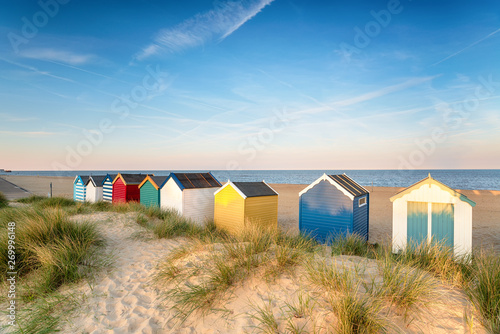 Fotografie, Obraz Beach huts in sand dunes at Southwold