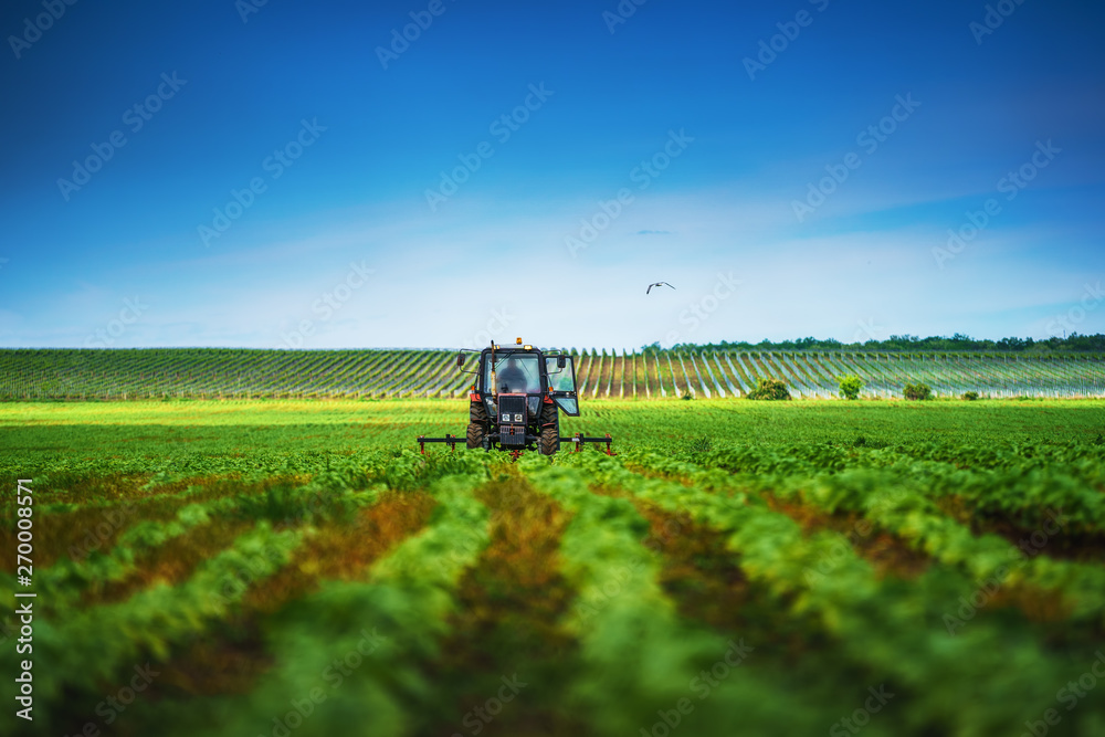 Fototapety, obrazy: Farmer in tractor preparing land with cultivator in spring