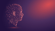 Human Head With Network Plexus...
