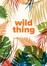 Summer Decorative Poster Template With Translucent Foliage Of Tropical Jungle Plants And Phrase Wild Thing. Flyer With Exotic Palm And Monstera Leaves. Modern Seasonal Flat Vector Illustration.
