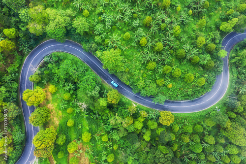 Fototapety, obrazy: Aerial view on road in the forest. Highway throu the forest. View from a drone. Natural landscape in summer time from air. Travel - image