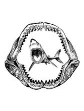 Graphical Shark In Megalodon J...