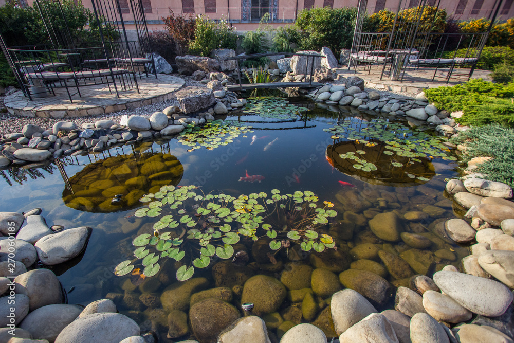 Fototapety, obrazy: Beautiful small pond with fishes