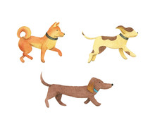 Cute Watercolor Dogs. Isolated...