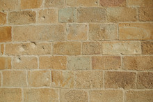 Close-up Of Wall With Small Gr...