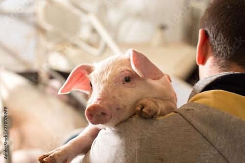 Fotografia Farmer holding piglet on his shoulder