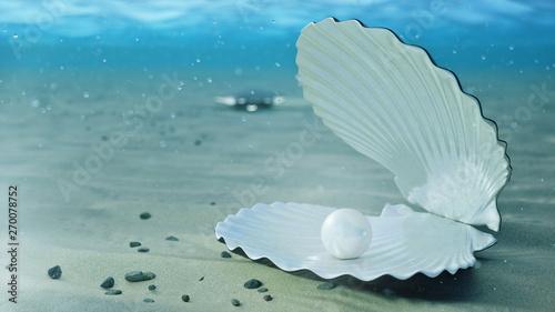 Fototapeta  Mother of pearls underwater