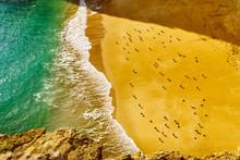 Seagulls Enjoy The Sunlight At...