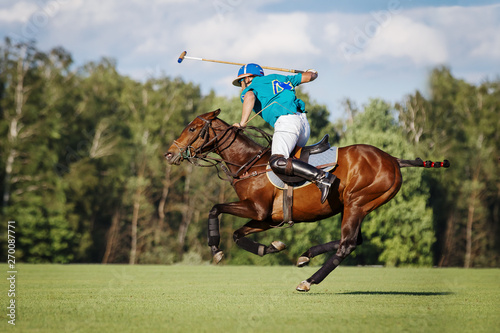 Horse polo player hit the ball with a mallet in action. Profile side view